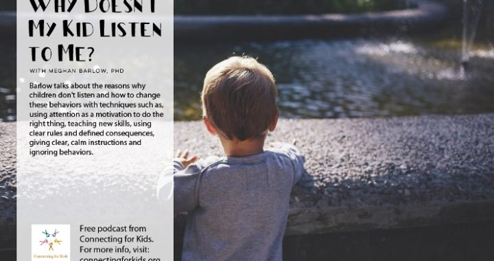 Why Doesn't My Kid Listen to Me?
